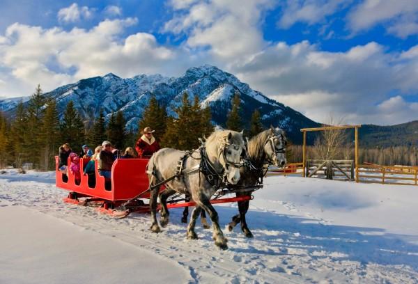 Horse Drawn Sleigh Ride - Banff & Lake Louise Tourism / Paul Zizka Photography.