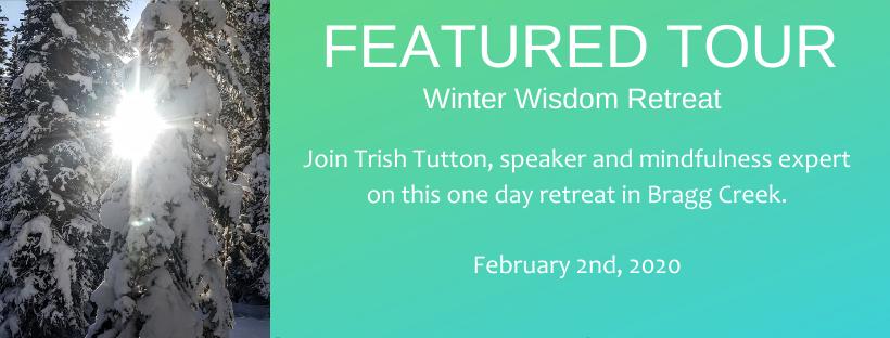 Winter Wisdom BANNER