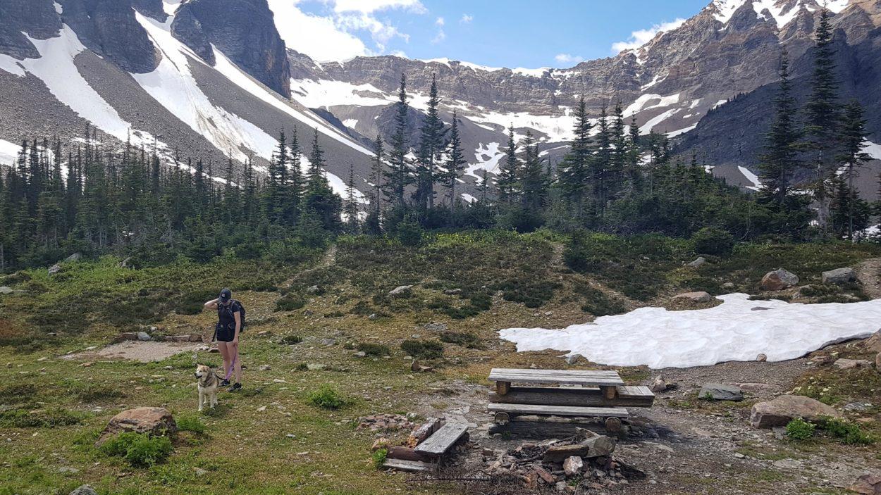 Campground at Gorman